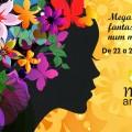 Feira de artesanato – Mega Artesanal 2014